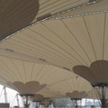 Architecture membrane